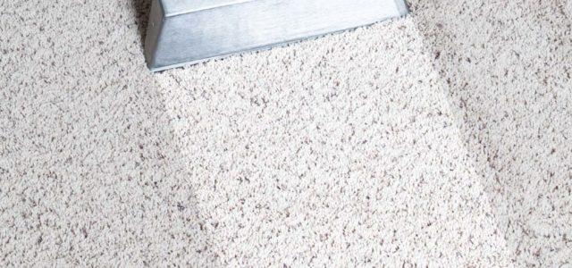 Toronto Carpet Cleaning