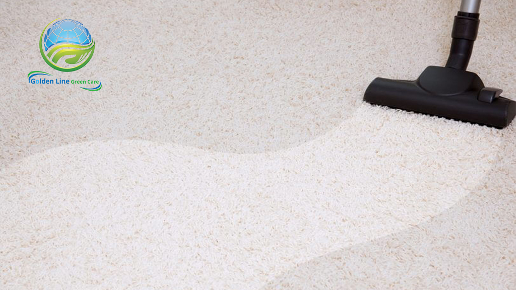 What to do before your professional carpet cleaner arrives.